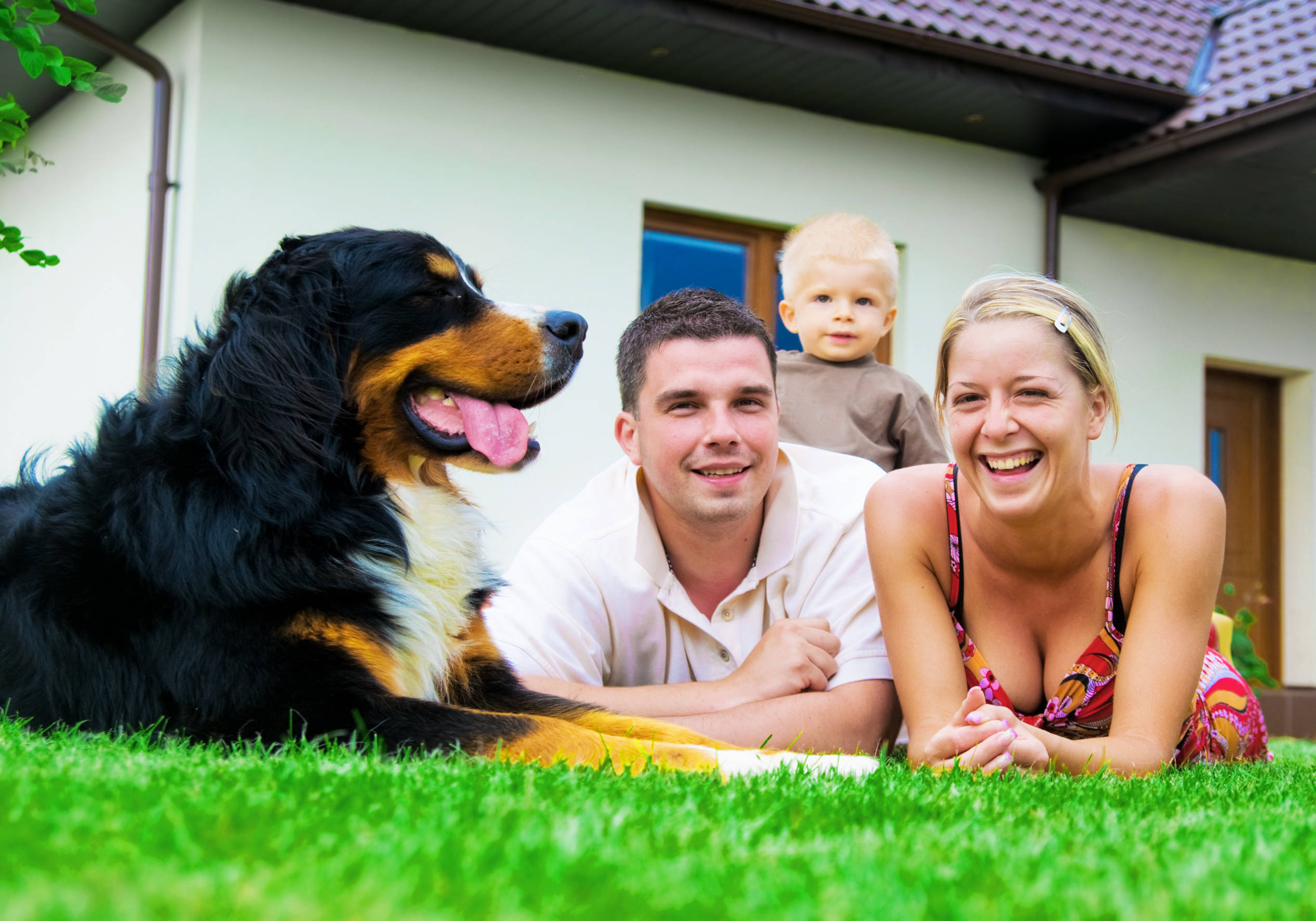 family-with-dog-1 A & A Pest Control | Manchester, CT - Get $25  OFF Seasonal Services